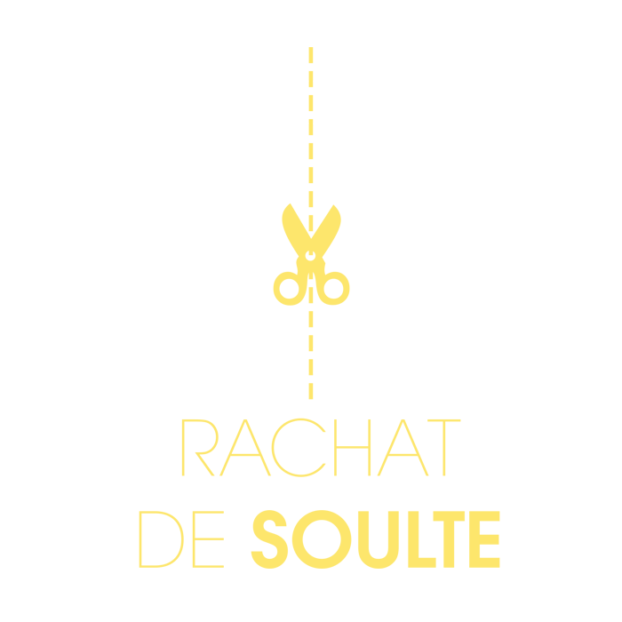 icone-soulte